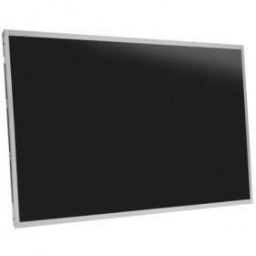 display-schermo-led-per-notebook-17-3-lucido-connettore-40-pin-1600-x-900-hd