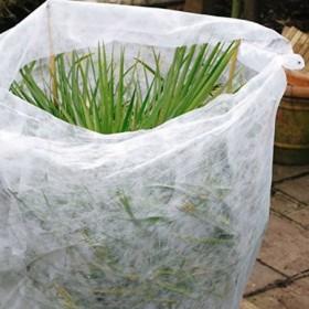 progarden-telo-per-protezione-piante-1-5x5m